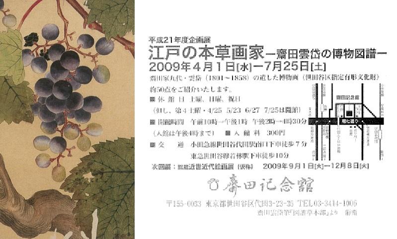 江戸の本草画家