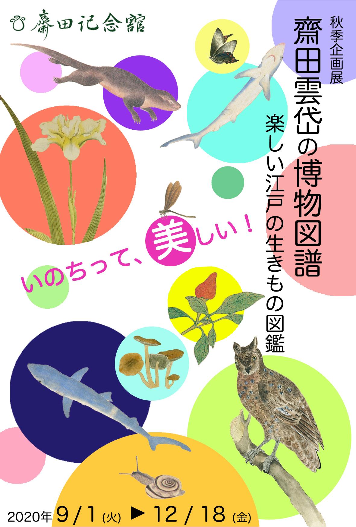 齋田雲岱の博物図譜―楽しい江戸の生きもの図鑑―